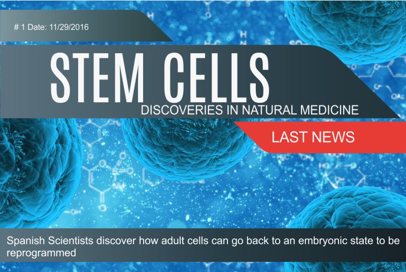 stem cells, keys cell damage