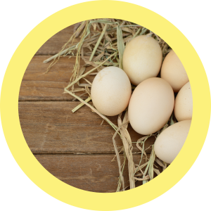 budwig protocol, vitamin d, cancer, eggs